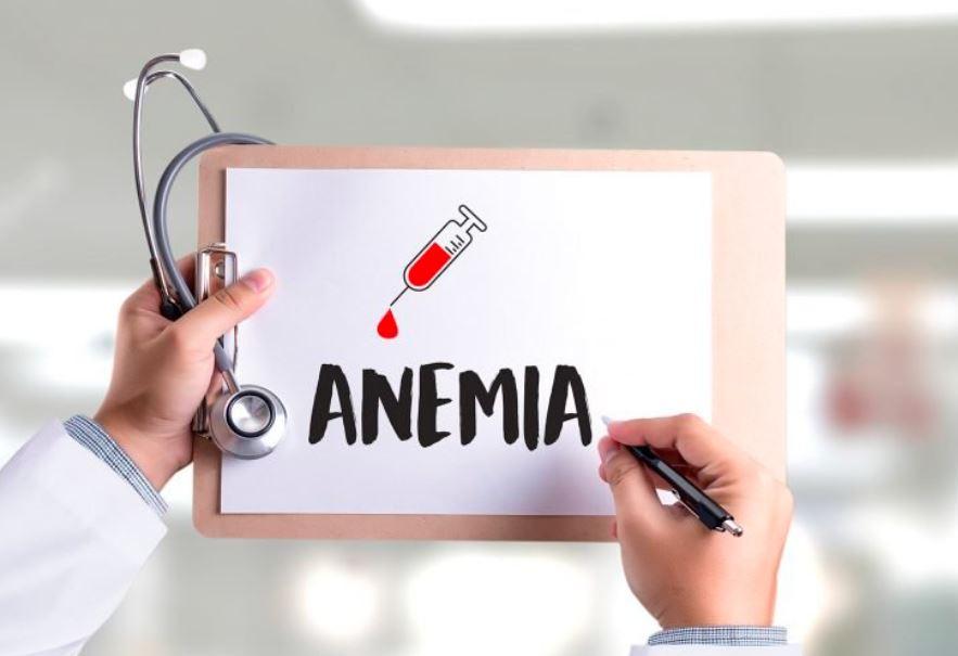 Mengkonsumsi daging entok ternyata dapat mencegah terjadinya anemia   image 6