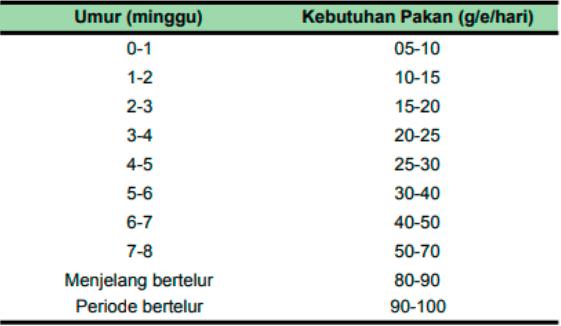 Tabel kebutuhan pakan KUB per hari   Image 8